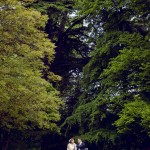 Castle Leslie Couple Photography Wedding