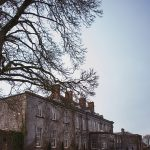 castle, durrow, facde, spring, tree