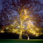 nightitme photograph at Rathsallagh Tree for wedding couple