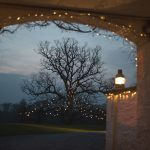 rathsallagh, wedding, photos, night, tree, lights, details, atmosphere