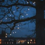 rathsallagh, wedding, photos, tree, night, lights, details, atmosphere