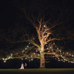 Rathsallagh Wedding Photography tree