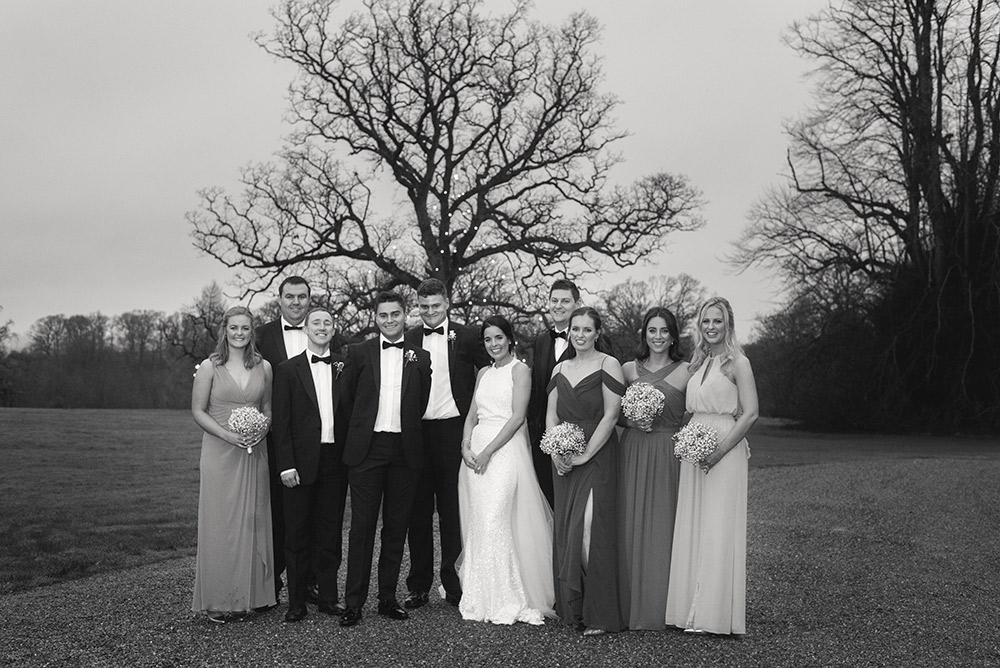 bridal party at rathsallagh tree
