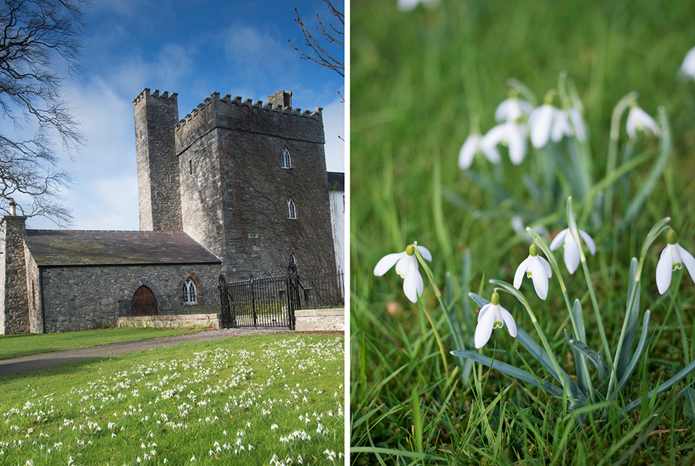 spring wedding at barberstown castle