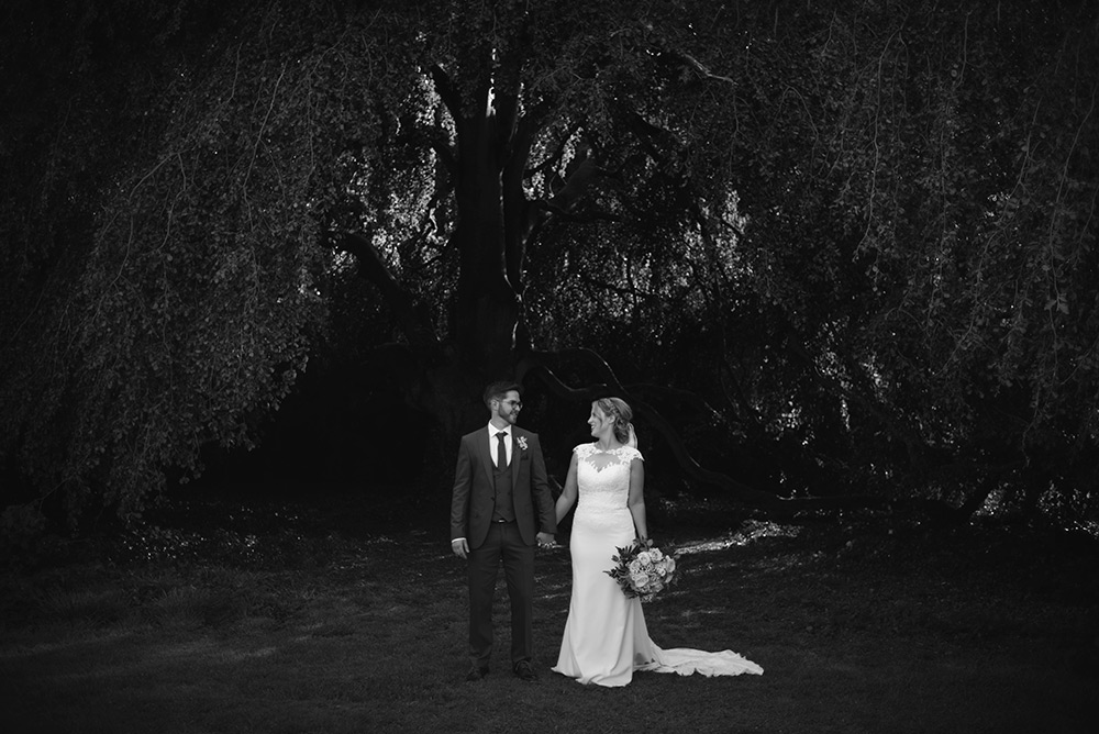 wedding couple under the tree at bellinter house wedding