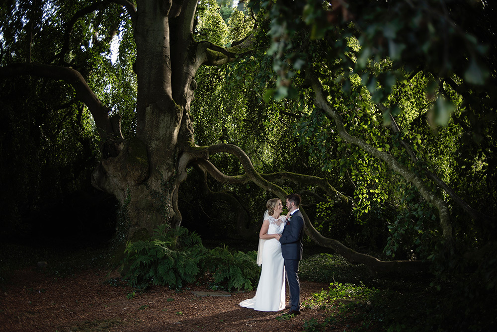under the tree at bellinter house wedding