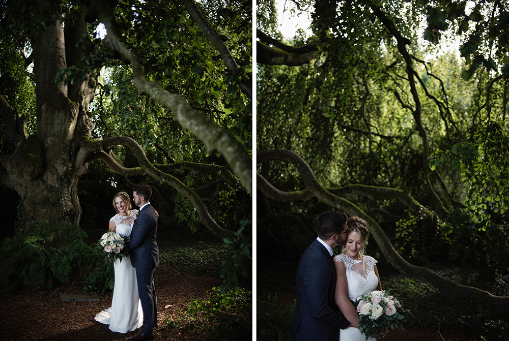 bride and groom under tree at bellinter house wedding