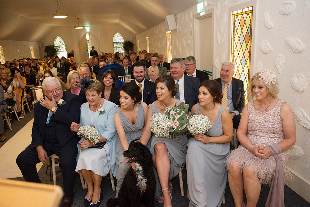dog friendly weddings in ireland
