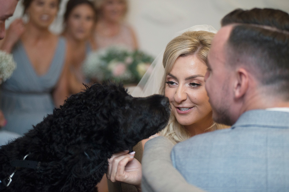 bring your dog to your wedding rathsallagh house
