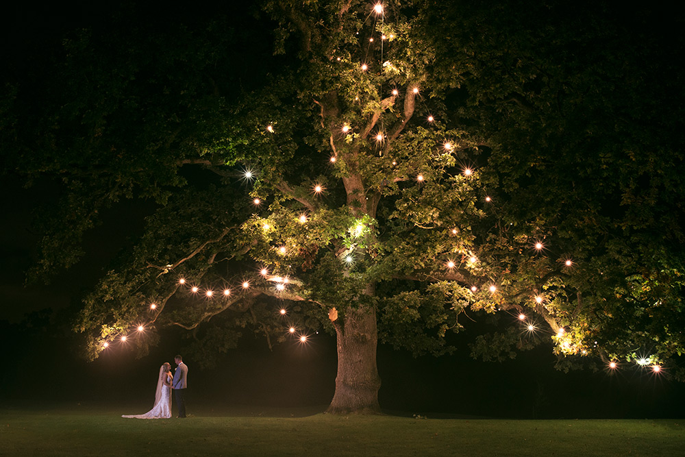 under the tree at rathsallagh house wedding